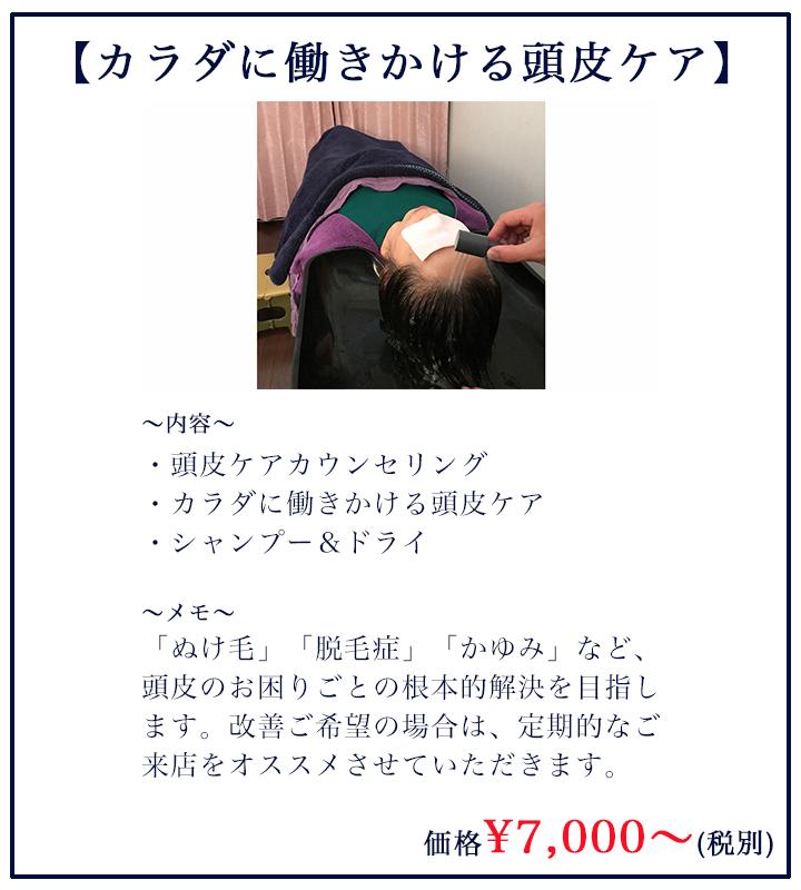 カラダに働きかける頭皮ケア¥7000(税別)〜